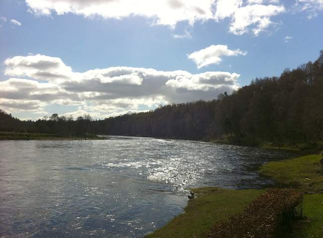 Scotland Has The Most Wonderful Salmon Rivers